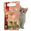 غذای خشک بچه گربه
